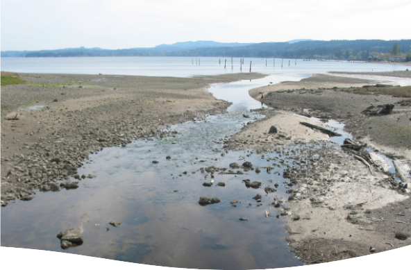 Clean Water Kitsap Water Cleanup Projects